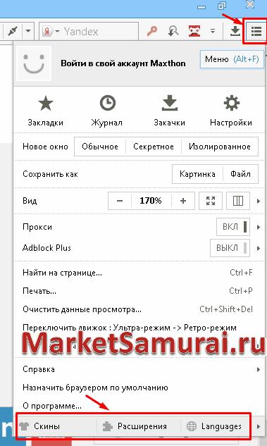 Кнопки «Скины», «Расширения», «Languages» браузера