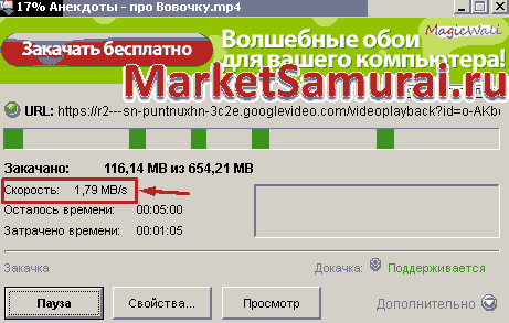 Окно программы Download Master во время скачивания файла